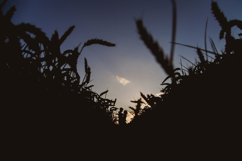 silhouette photograph of a bride and groom hugging in a wheat field